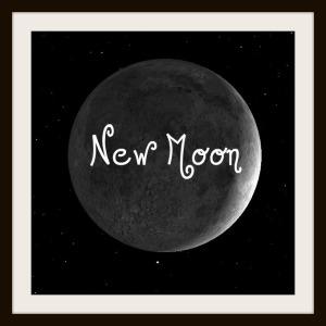 NewMoon13